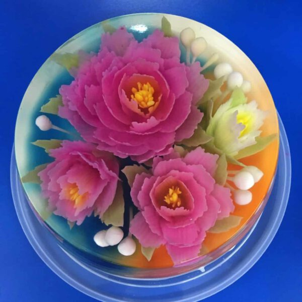 Thermomix Jelly art class2